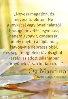 Motivating Quotes, Buddha, Good Things, Motivation, Reading, Life, Ideas, Quotes, Motivation Quotes