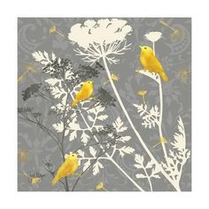 A charming addition to any home, the Grey and Gold Finch Canvas Wall Art is a lovely canvas print featuring beautiful floral sprigs and goldfinches. Its limited yet vibrant palette makes this piece a stunning work of art. My Canvas, Canvas Wall Art, Canvas Prints, Art Prints, Grey And Gold, Gray Yellow, Black Silver, Gras, Metal Wall Art