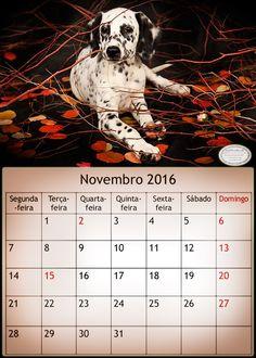 Lenalima, fotografa em Belo Horizonte/Brasil Calendario Outubro de 2016-lenalima fotografa em Belo Horizonte.