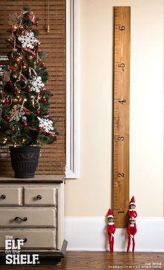 How Do Your Scout Elves Measure Up? | Elf on the Shelf Ideas