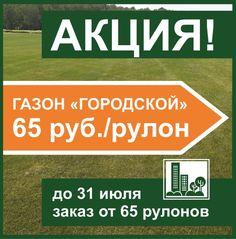 Гидропосев газона под ключ | Русские газоны Iphone, Lawn