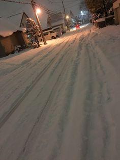 札幌は朝から雪です。