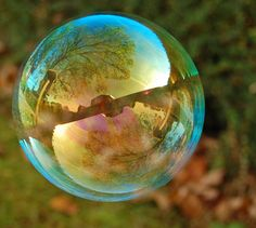 Streaky Sky Birdtable Bubble
