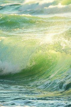 Garota eu vou pra Califórnia Viver a vida sobre as ondas Vou ser artista de cinema O meu destino é ser star.