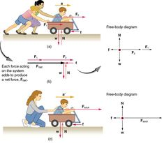 This digram shows that by the two people pushing on the wagon demostrates Newton's first law that an object in motion will remain in motion. This diagram also nicely shows how the forces are acting on the wagon and what forces are. Engineering Science, Physical Science, Teaching Science, Science Projects, Science Activities, Science Chemistry, College Physics, Physics Classroom, Physics Notes