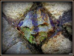 石垣に顔 The face on the stone wall