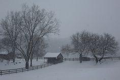 022115_Snow6