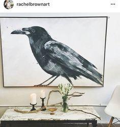 Rachel Brown Rachel Brown, Bird, Animals, Animales, Animaux, Birds, Animal, Animais