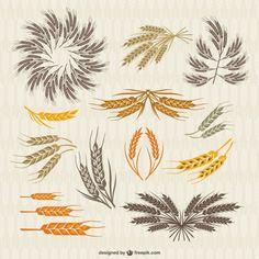 Kolekcja zabytkowe korony i kłosy pszenicy