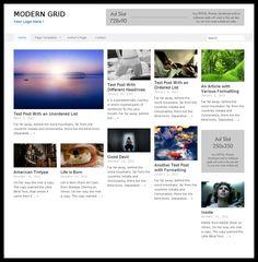RichWP - Modern Grid WordPress Theme Review