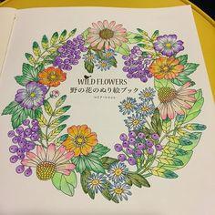 Instagram media misao0621 - 綺麗な水筆使いがまだ良くわからないけど 水彩楽しいね! #coloringbook #coloriage…