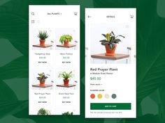 Ecommerce mobile website - PlantArt 🍃 designed by Adrian Salazar. Connect with them on Dribbble; Neon Pothos, Bird Nest Fern, All Plants, Material Design, Ecommerce, App Ui, Mobile App, Website, Iphone