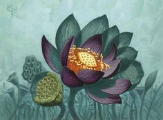 Portfolio of the Lotus