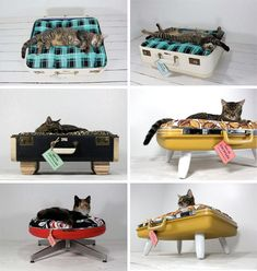Upcycled pet beds made out of old suitcases and furniture legs. My cat is so getting one of these!
