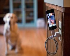Bobine iPhone Cable Stand