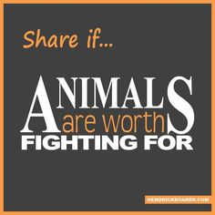 SHARE if #animals are worth fighting for! #adopt #shelter #dogs #cats #pets #puppies #kittens #foster #care #homes #help #feed #love #share #donate