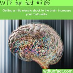 Electric shocks to the brain can improve your math skills - WTF fun facts