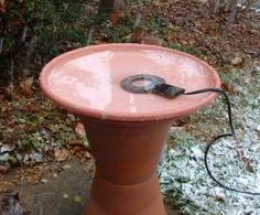 In cold weather, a heated bird bath can be a bird's best friend