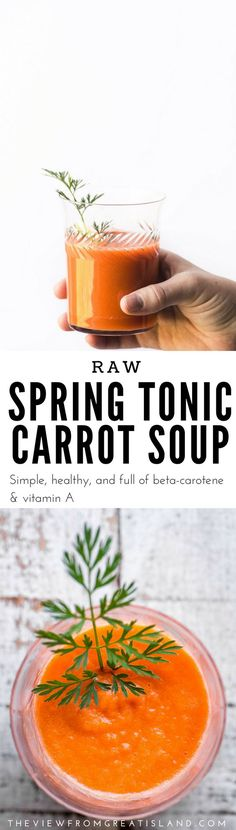 Spring Tonic Carrot Soup ~ a vibrant beta carotene and Vitamin A rich raw soup that'll kick start you into the new season ~ are you ready?  #soup #raw #carrots #carrotsoup #appetizer #tonic #healthtonic #springsoup #carrotjuice #juicing #glutenfree #whole30 #paleo #vitamixsoup #vitamix #Mothersdayrecipe #easterrecipe #passoverrecipe #detox #healthysoup #superfood #carrots