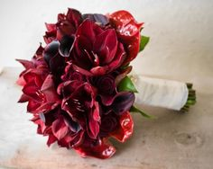 Sacramento Wedding Flowers- Melissa and Danny at The Sacramento Grand Ballroom, Bridal Bouquet of Black Bacarra roses, burgundy amaryllis, Schwarzwalder callas and a touch of kangaroo paw all framed by anthurium blooms