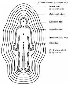 Fényörvény : Az aura rétegei Body Anatomy, Human Anatomy, Spiritual Photos, Aura Reading, Removing Negative Energy, Wine And Liquor, Qigong, Wine Bottle Crafts, Book Of Shadows