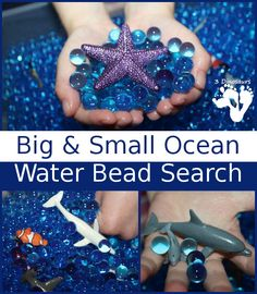 (Ocean Search) - IDEA: prep sensory vocab search bins for weekly themes; use w/worksheet (pics&labels) for check-off & take-home (Also: sensory bins for grammar targets: prepositions, pronouns, WH-questions. Sensory Bottles, Sensory Bins, Sensory Play, Sensory Table, Sensory Rooms, Ocean Activities, Summer Activities, Preschool Activities, Preschool Plans
