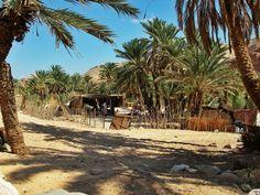 #Sinai desert #travel #nomad #bedouin culture #safari #Dahab #nuweiba