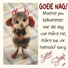 Funny Phone Wallpaper, Goeie Nag, Afrikaans, Good Night Quotes, Special Quotes, Deep Thoughts, Cute Animals, Life Quotes, Teddy Bear