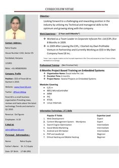 Perfect job resume format a perfect resume professional resume how can i make a resume fanciful how to make my resume 14 how to make my resume stand out yelopaper