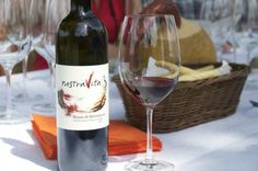 Visit and wine tasting at Nostra Vita in Montalcino