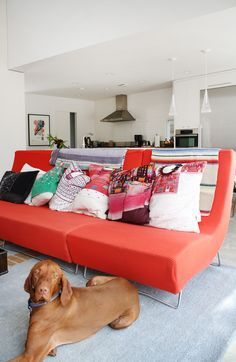 : Sam, Anne and Tesla : Apartment Therapy Bright Pillows, Colourful Cushions, Accent Pillows, Space Furniture, Modern Furniture, Secret House, Cozy Sofa, Small Apartment Design, Interior Design Boards