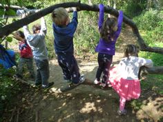 Forest Fours: students immerse themselves in nature instead of a classroom.