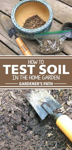 Does your garden face the same issues year after year? The answer could be in your soil. Nutrient deficiencies, pH imbalances, texture, and the percentage of organic matter can all be revealed through a simple test. Collecting a sample and sending it off for professional analysis and advice is easier than you think.