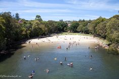 Parsley Bay Reserve in Sydney's east is a tiny little slip of a beach at the very pointy end of Vaucluse. It's right next to the verypopular Nielsen Park, and yet has remained under the radar thus far. We dropped by on New Year's Day, as is not only our custom, but most of Sydney's, …Read more...