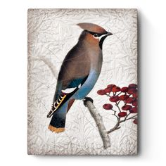 2019 - Fall: Season of the Soul Tile No: Waxwing Perched among the cedars with silky plumes, May your kindness and generosity bear fruit. About This Collection Sid Dickens' Fall 2019 Collection Art Wall, Original Wall Art, Original Collectibles, Wall Art, Ancient, Artist, Painting, Imagery, Houston Llew