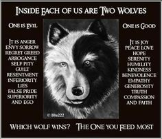 8 Best Wolves Images Gray Wolf Tattoo Wolf Beautiful Wolves