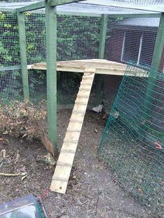 DIY Chicken Coop Sun Deck - Your chickens will love this! #DIYchickencoopplans
