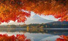 Mount Fuji in autumn sunrise