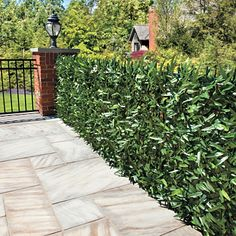 Faux hedge privacy screens.  These TOTALLY transformed my roof deck (and gives added bonus of shade