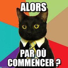 Business cat meme (http://www.memegen.fr/meme/mtloe4)