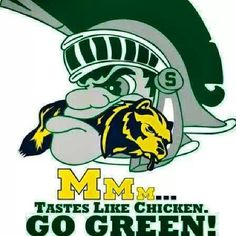 """Let's go Green! I have friends that are """"rabid"""" fans of one team or the other .... but this is just FUNNY!!!"""