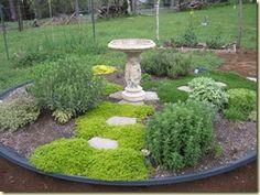 This herb garden is planted in what was a satellite dish. The perfect spot for a rock garden with a fountain in the center! Herb Garden, Garden Tools, Hosta Gardens, Satellite Dish, Nature Crafts, Garden Spaces, Front Yard Landscaping, Plant Care, Dream Garden
