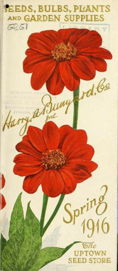 Front cover of Harry A. Bunyard's Spring 1916 seed catalogue with an…