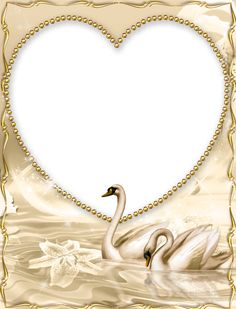 Beautiful Golden PNG Frame with Swan