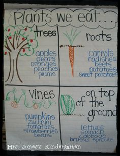 Mrs. Jones's Kindergarten: More Plants + Writing Celebration + TpT SALE!