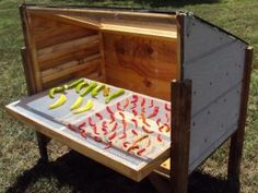 DIY Dehydrator. This one actually looks doable.