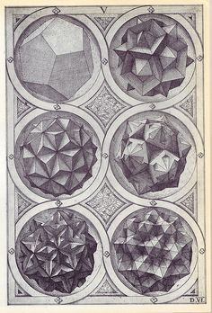 Coelum (b) - Perspectiva Corporum Regularium - Wenzel Jamnitzer 1568 | Flickr – Condivisione di foto! Mathematics Geometry, Sacred Geometry, Euclid Elements, Euclidean Geometry, Johannes Kepler, Platonic Solid, Tesselations, Ancient Greek Art, Geometric Shapes