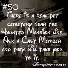 ideas for funny disney facts disneyland secrets Disneyland Secrets, Disney Secrets, Disney Tips, Disney Magic, Walt Disney, Disneyland Hacks, Disney Parks, Disneyland Quotes, Disney 2017