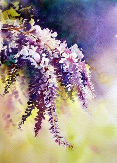 Aquarelles fleurs & fruits -Aquarelle Marichalar Watercolor