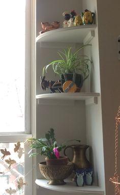 Little corner shelves.
